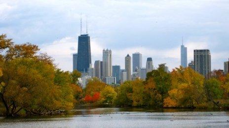 ChicagoFall
